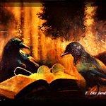 Raven Rapture