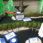 Youth Environmental Education