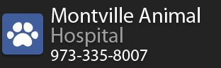 8250_montvilleanimalhospital_12a_edit_1.png