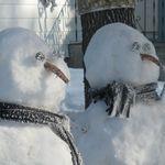 hoarfrost_on_snowman.jpg