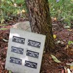 Veterans_memorial_2016__24_