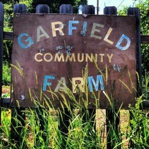 garfield-300x300.jpg