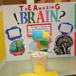 20120418_wr_science_fair_-_087