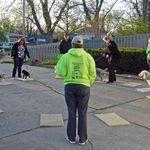 Group-Dogs.jpg