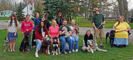 Lisa Freeman Dog Trainer Owosso Michigan AKC Star Puppy Class
