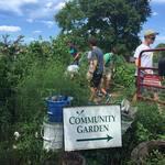 Garden_day