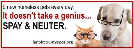genius_dog_cat_spay_neuter_fb_banner.jpg