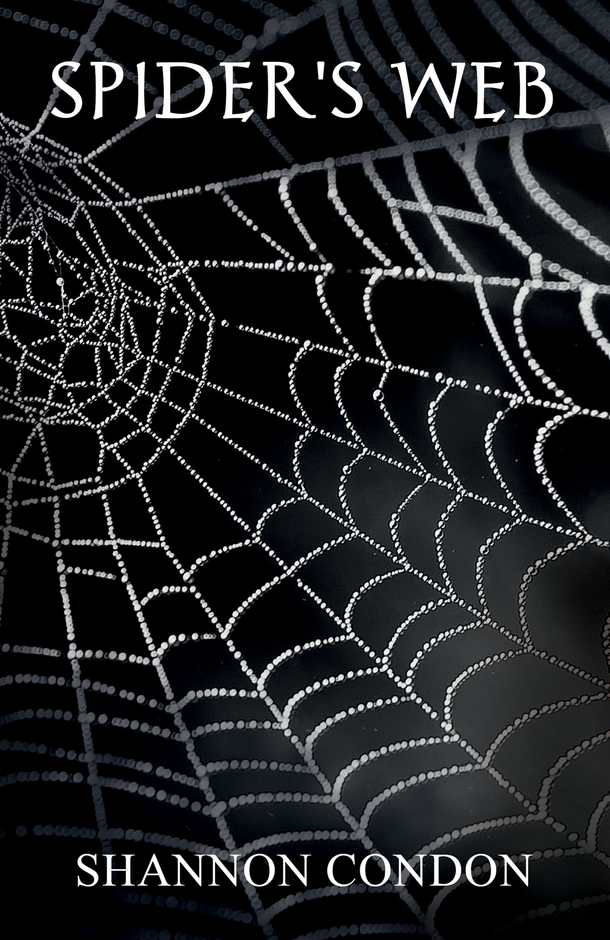 Spider's Web Cover.jpg
