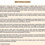 Why title a dog?