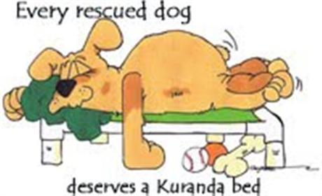 Kuranda_Bed_rescue__Small_.jpg