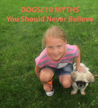 Dogs_10_Myths_You_Should_Never_Believe.jpg