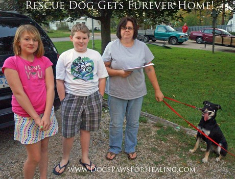 Rescue_Dog_Forever_Home.jpg