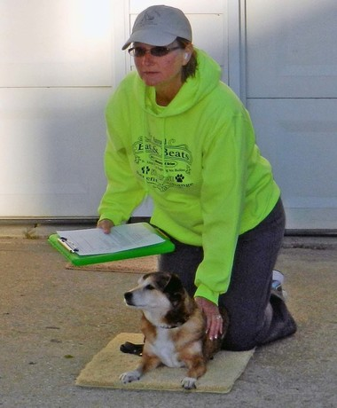 Dog_Training_Michigan_Lisa_Freeman.jpg