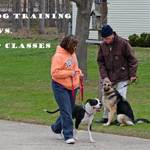 Private Training or Group Dog Classes