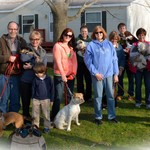 Family Puppy and Dog Training-- Is It For You?
