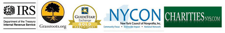 IRS-Grass-Guide--NYCON-Charities_logo.jpg