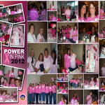 Collage_of_power_in_pink_2012