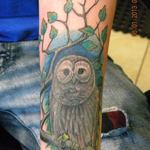 Owl_tree