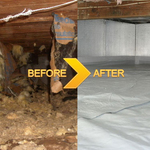 Crawl_space_cleanup-1