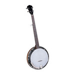 Banjo_100dpi_4x4