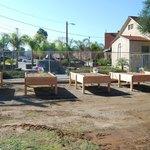 Circle Community Garden