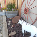 Browns_country_store_019
