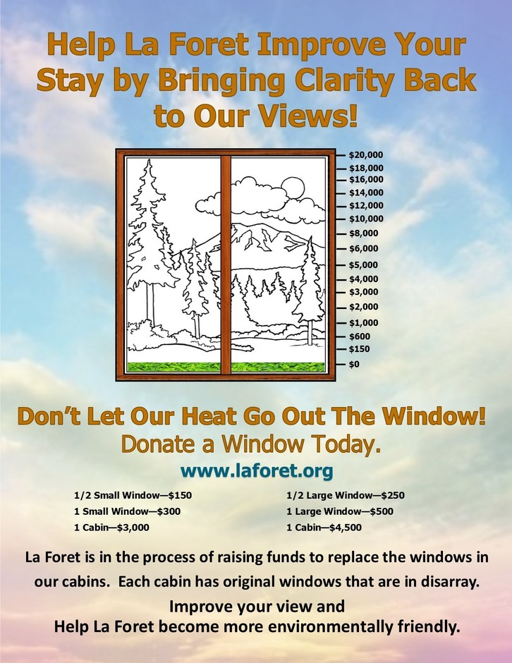 window campaign 1.jpg