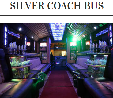 Silver Bus.png