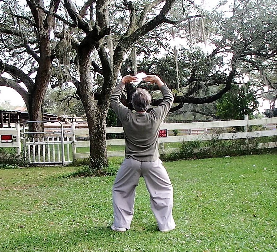 Back view of American Buddhist Tai Chi