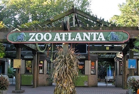 daytrip-atlanta-zoo.jpg