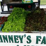 2015 Farmer's Markets
