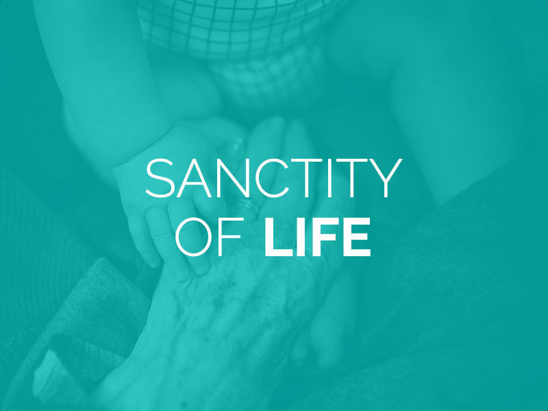 The Sanctity of Life