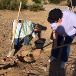 Wemar_planting_2
