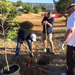 Wemar_tree_planting_4
