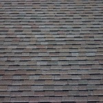 Sample types of shingle and tile