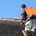 What Roof Shingles Should You Choose When It Comes To Your Roof?