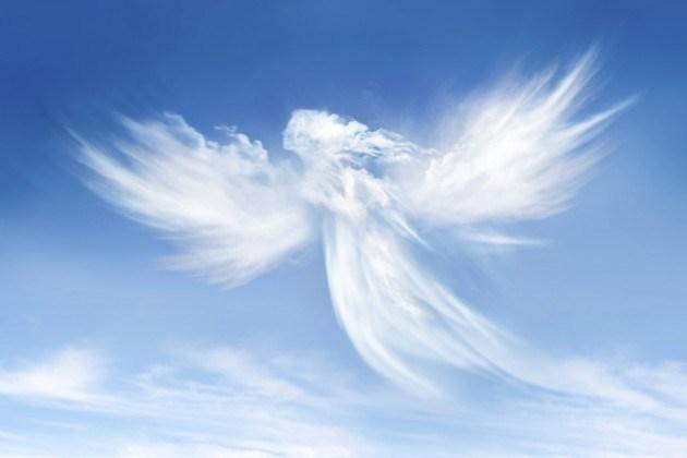 Angels-630x420.jpg