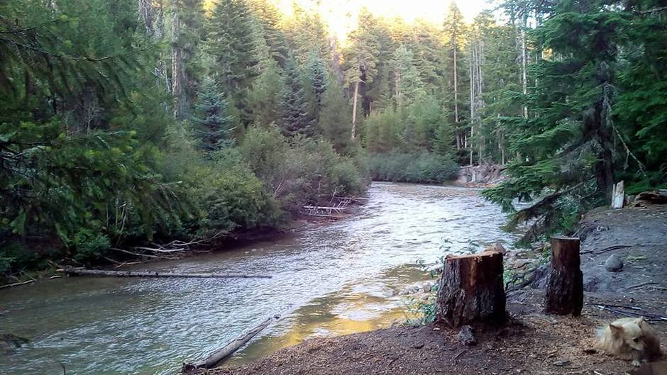 Gorgeous Locations Oregon Turquoise Gem Cilica Copper