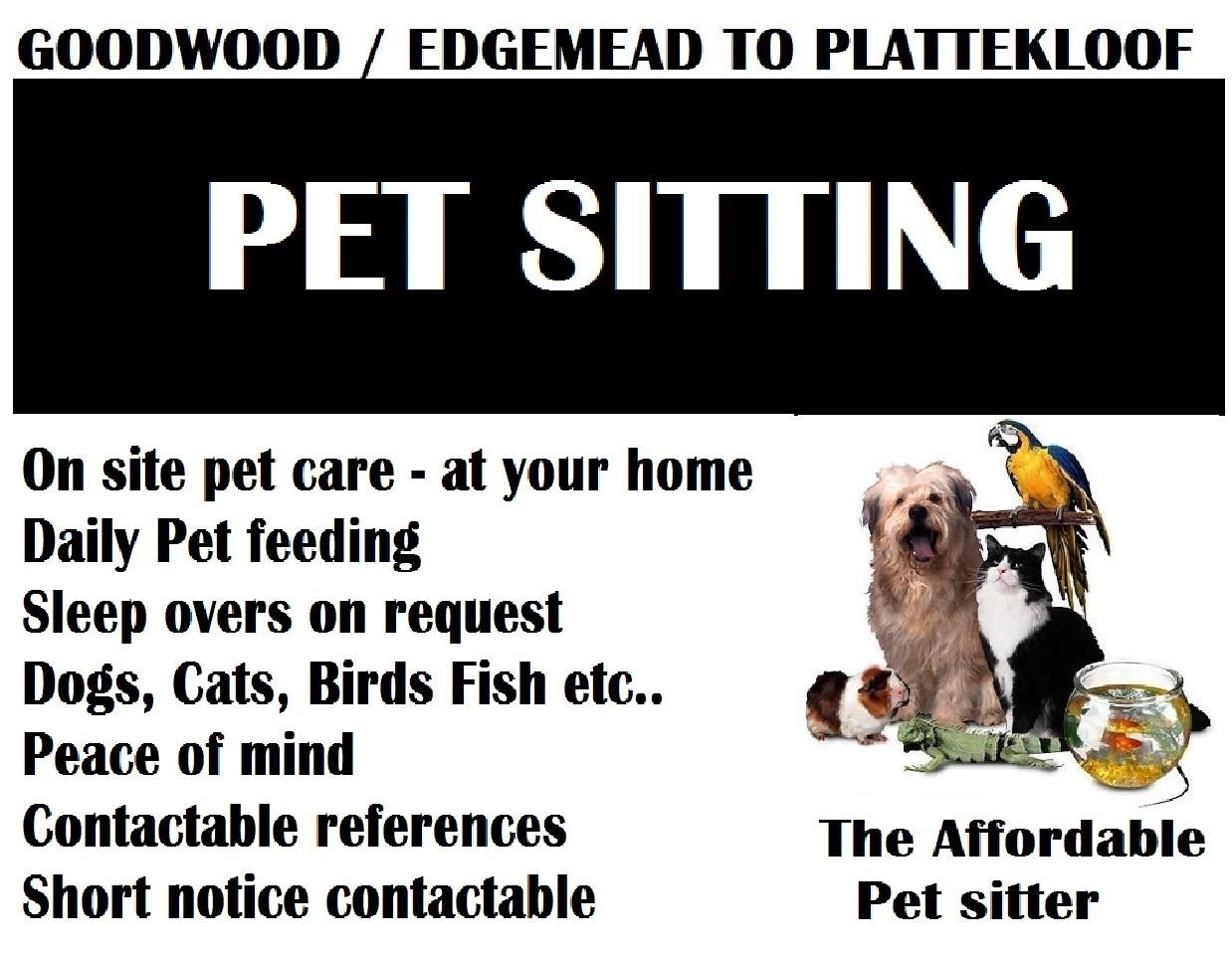 home affordable pet sitter powered by doodlekit affordable pet sitter