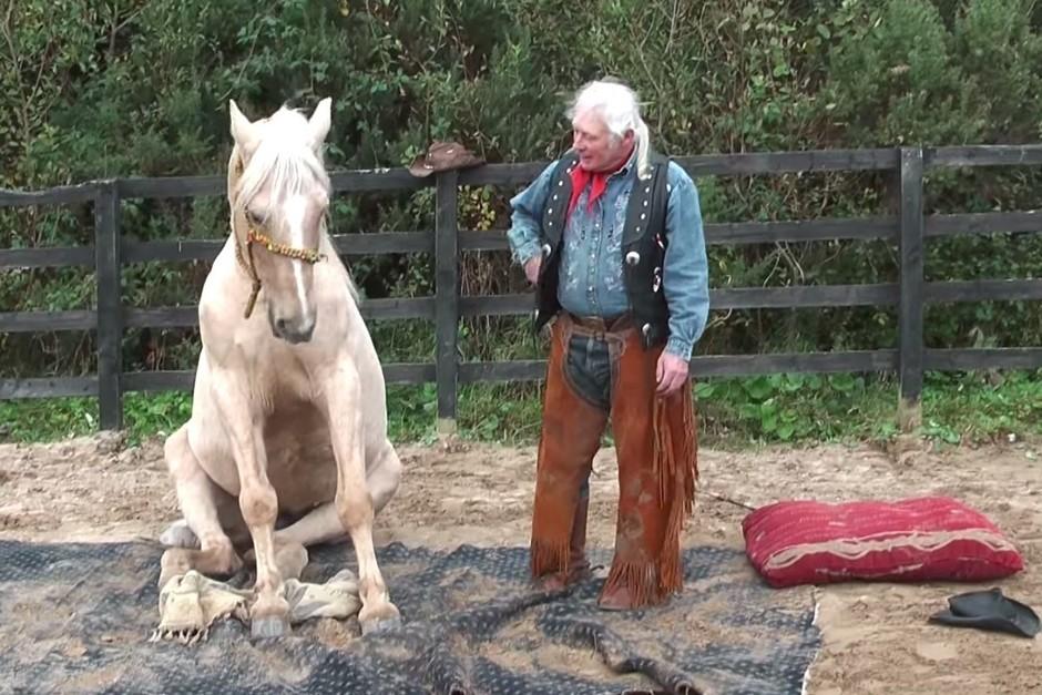 sitting horse.jpg