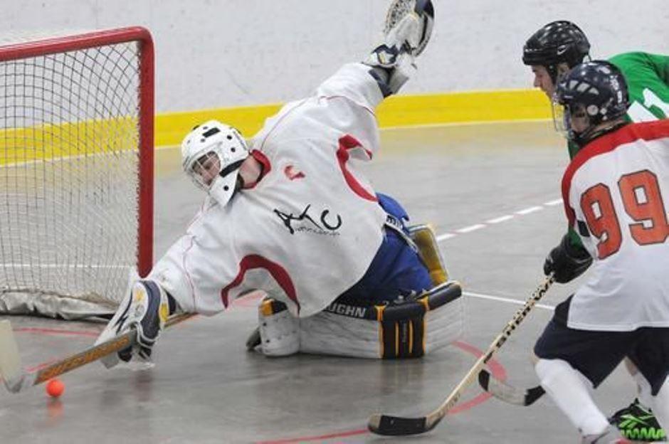 ball_hockey_goalie_save.jpg