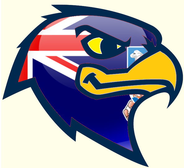 FI Hawk Logo.png