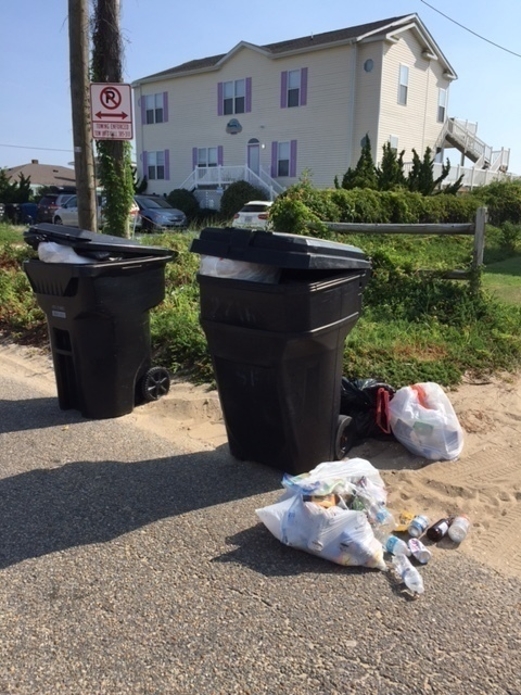 trash bags.JPG