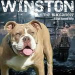 Winston's Pics