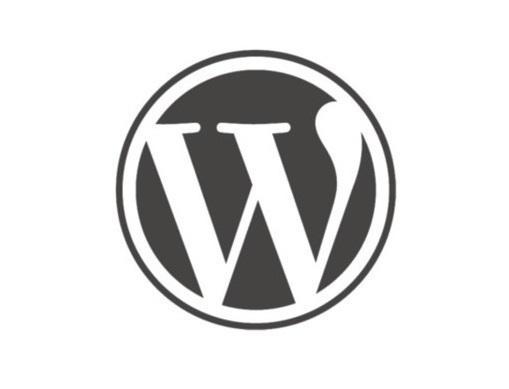 WordPress Ecommerce Website Solution
