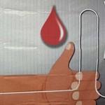 Terpapar Penyakit, Ratusan Kantong Darah Dimusnahkan