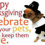 Thankgiving and Your Pet