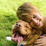 Why Your Pet's Health Can Effect Your Health