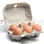 Reasons for Buying An Egg Carton Machine In China