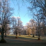 25/11/2017 A Walk in the Park